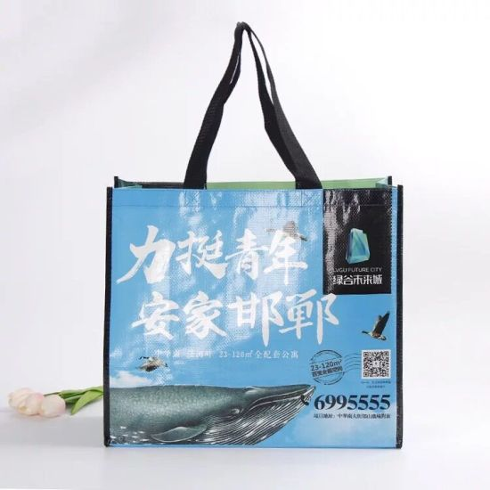 Customized Logo Eco Friendly Promotional PP Woven Shopping Advertising Hand Packing Bag pictures & photos