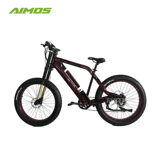 48V 1000W Fast Electric Ebike for China Manufacturer
