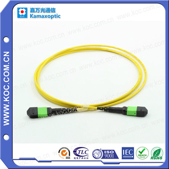 Competive Price MPO/MTP Fiber Optical Assembly for Data Center pictures & photos