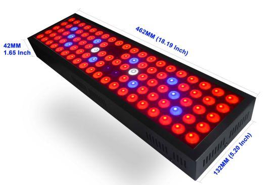 3 Years Warranty LED Plant Light Full Spectrum Panel Growing Lighting Greenhouse LED Grow Light