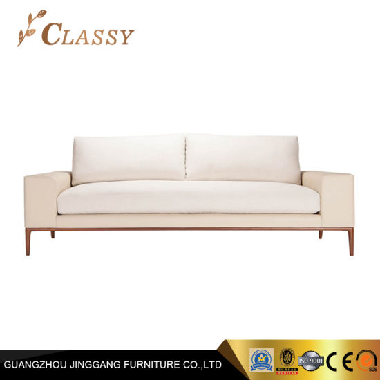 Hot Sale Sofa Velvet Furniture Sofa for Two Person Use
