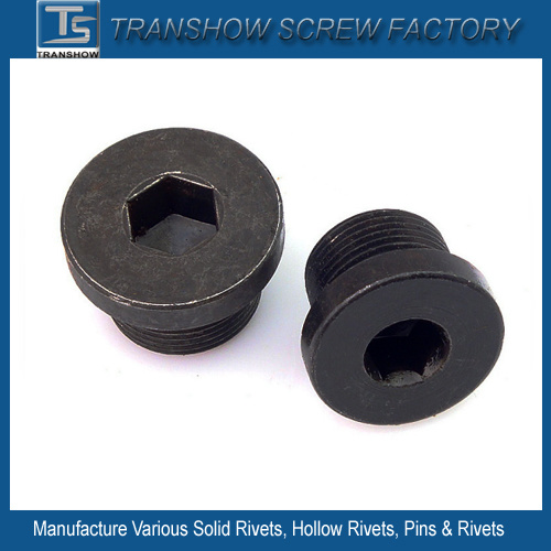 Hex Socket Pipe Plug pictures & photos