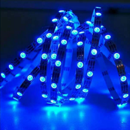 Indoor DC12V Blue Color Flexible Strip SMD LED