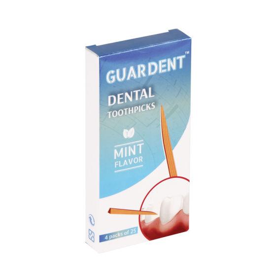 Guardent Toothpicks Mint Flavor 25X4 (100PCS)