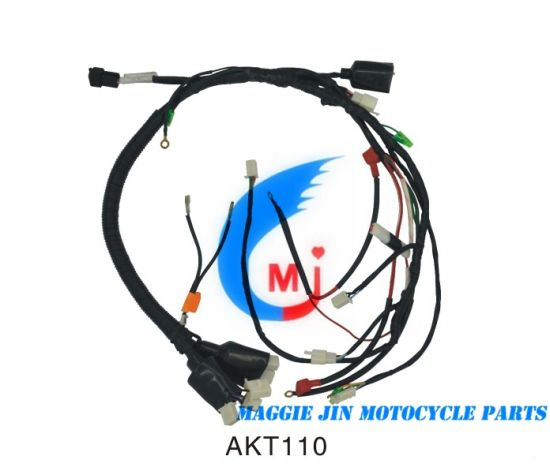China Motorcycle Parts Motorcycle Wire Harness for Akt110