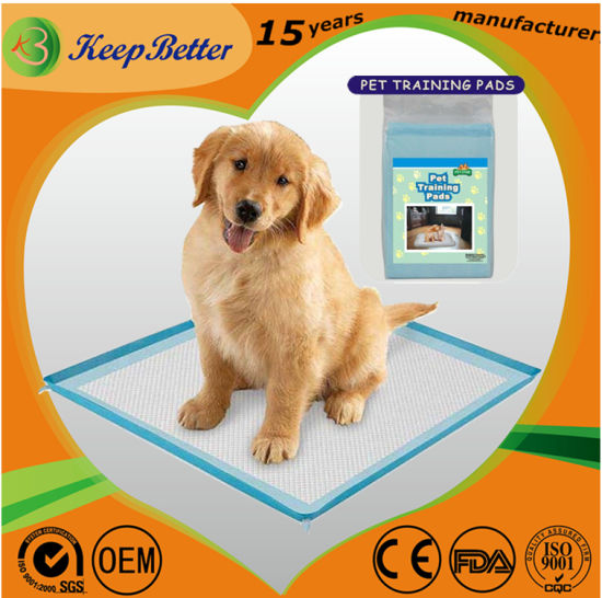 Pet Incontinence Supply Factory Manufacturr OEM Disposable Indoor/Outdoor Dog/Puppy/Cats PEE/Piddle/Wee Wee/Urine/Toilet Sanitary Training Pads/Bed Mats