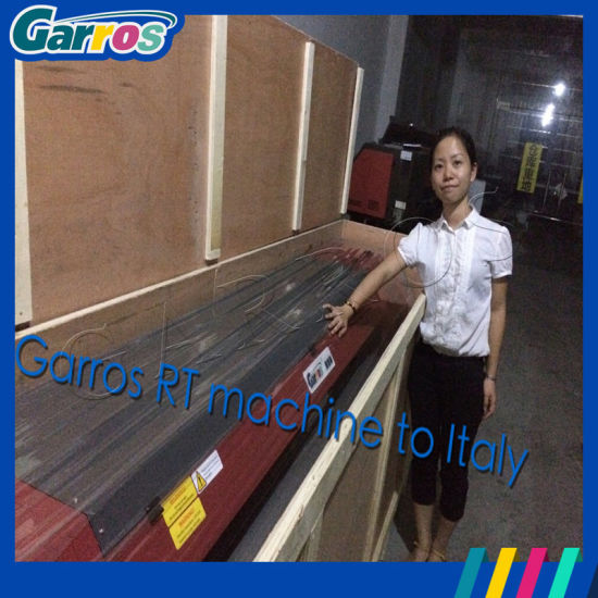 10feet 3.2m Digital Vinyl/Banner/Cloth Large Format Printer pictures & photos