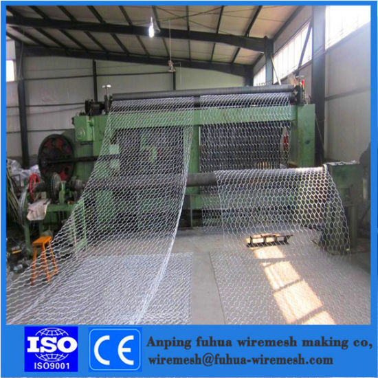 Galvanized/PVC Gabion Box Factory/Hexagonal Wire Netting/Stone Cage
