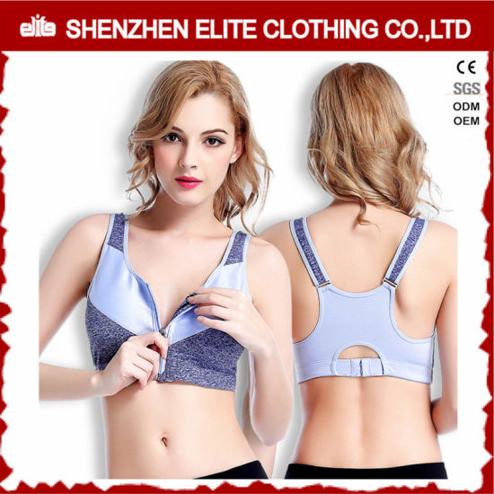 1d14b1c924 China Plus Size Padded Sports Bra with Zipper Elastic Band - China ...