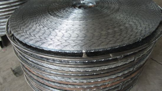 Welded Flat Rrazor Wire Fence pictures & photos