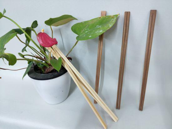Custom Printed Reusable Flat Biodegradable Disposable Mini Wooden Spoon Chopsticks Fork