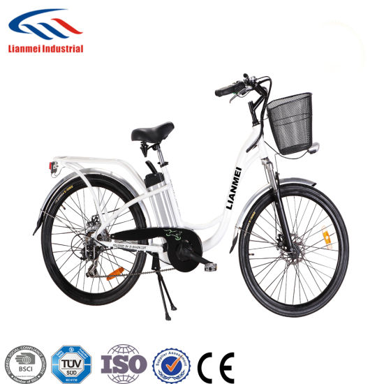 Electric City Bicycles 36V250W pictures & photos