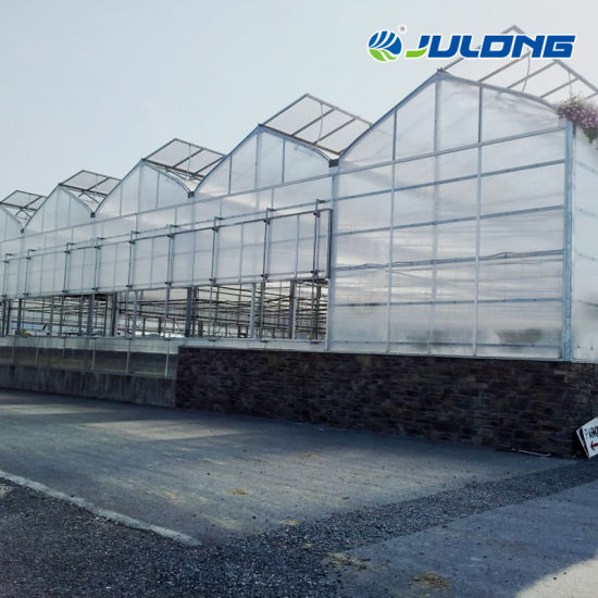 High Quality Agricultural Tomato Hydroponic Systems Plastic PE Film Tunnel Solar Multi Span Greenhouse