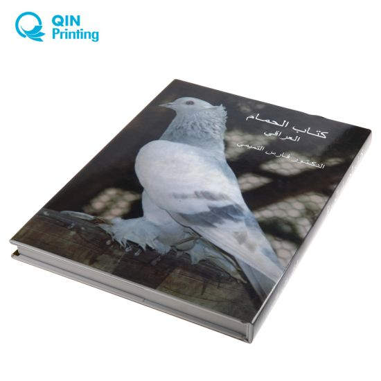 Top Ten Paper Printing Factory for Book Catalog Magazine Custom pictures & photos