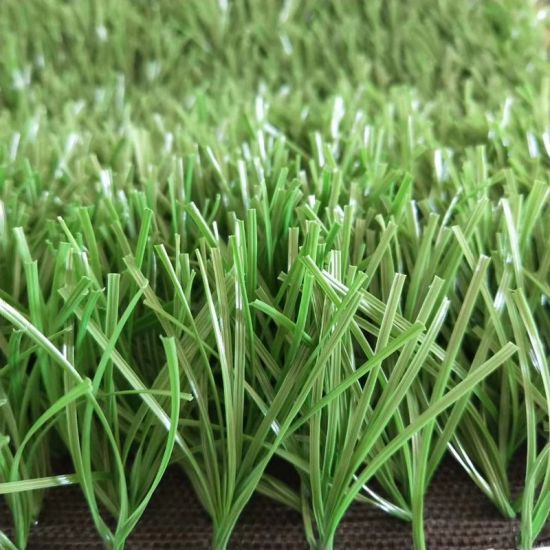Football Sports Use Synthetic Artificial Grass