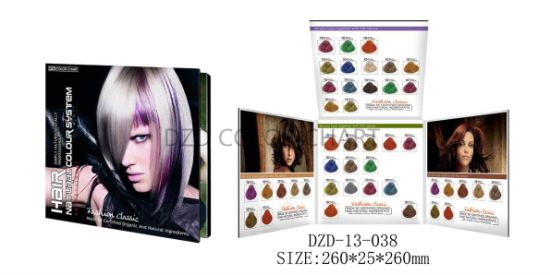 Hair Cream Colour Chart with All Kind of Hair Shape pictures & photos