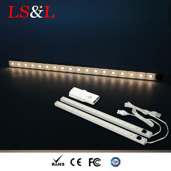 LED Batten Light Portable Rigid Sensor Camping Light - China