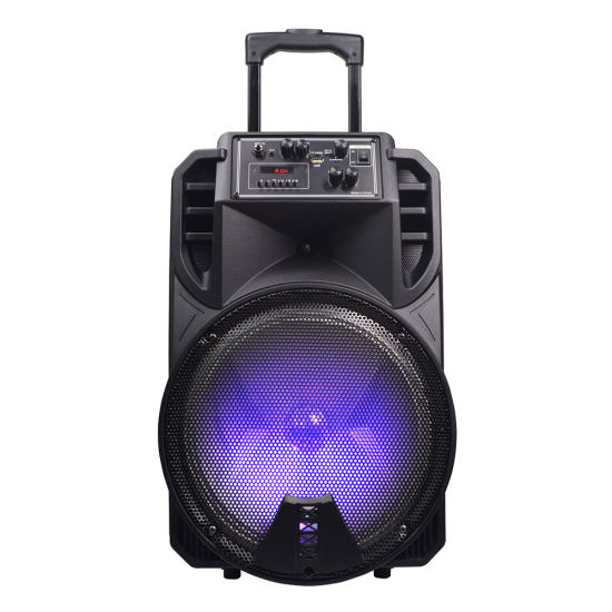 Temeisheng Private 12 Inch Outdoor Powered Portable Bluetooth Speaker Box