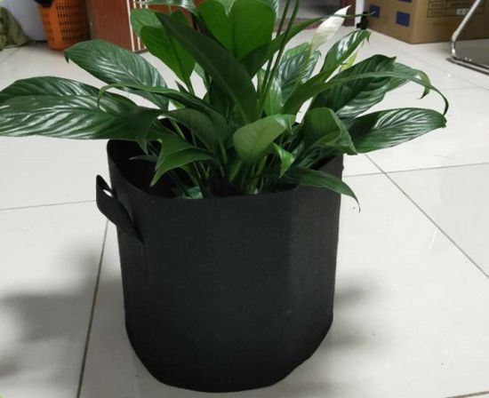 Yayimedical Customize Size Non Woven Fabric Pot Plant Grow Bags with Cheap Price