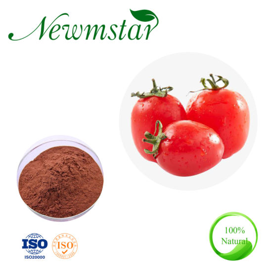 100% Pure Natural Cherry Tomato Extract, Factory Supply Tomato Extract Lycopene Powder Lycopene