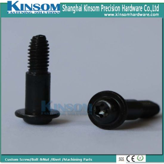Anti Theft Security Screw with Black Zinc Coating M4-M20 En ISO 10664 pictures & photos