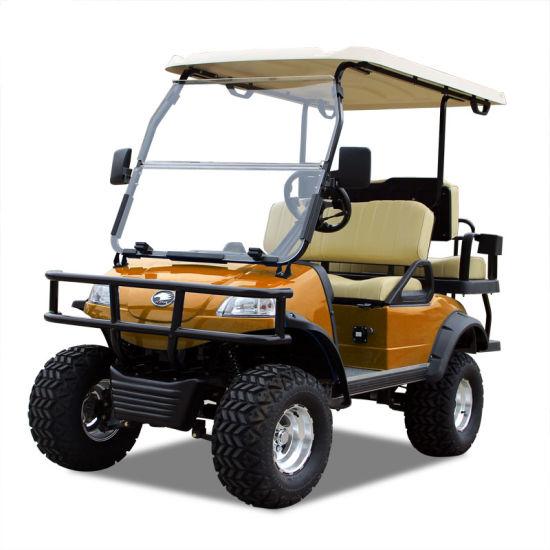 Electric Buggy Golf Cart Hunting Car (DEL2022D2Z, orange)