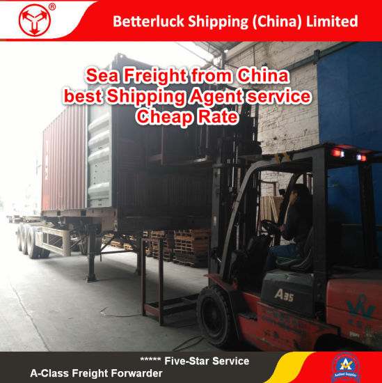 sea freight to Singapore from China Foshan shipping