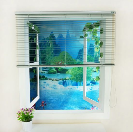Aluminium Window Blinds and Shades pictures & photos