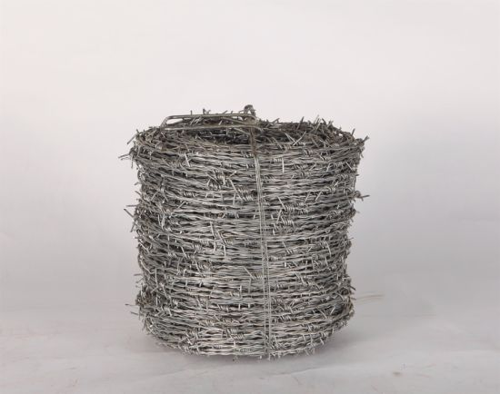 Stainless Steel Single Strand Barbed Wire