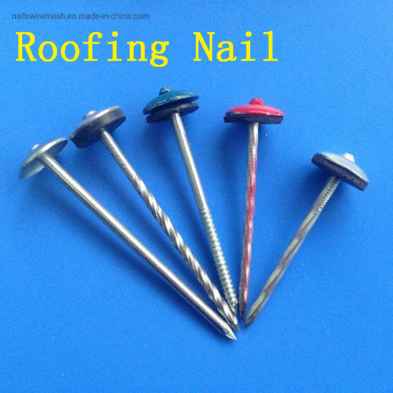 Galvanized Umbrella Head Colored Roofing Nail with washer rubber