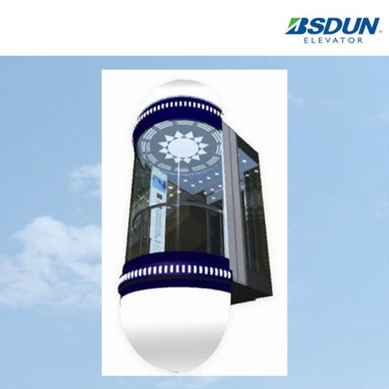 China Safe Observation Elevator Glass Elevator for Shopping Mall