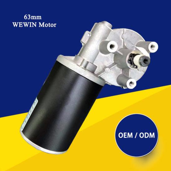 12V / 24V 100W Brushed High Torque DC Gear Motor for Automatic Door