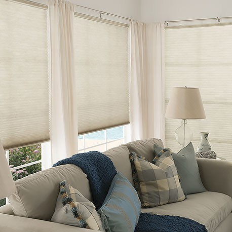 China Window Blackout Blinds Room Darkening Shade Cellular Shades For Bedroom Black Out 99 Light Uv Thermal Cordless And Easy To Pull Down Up China Cellular Blind Beehive Blind