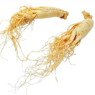 Panax Ginseng Root Extract Ginsenosides pictures & photos