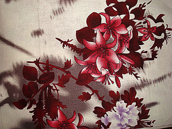 Print Linen and Dyed Line Ramie Fabric pictures & photos