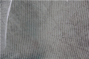 Stretch Net Bop Net Two Way Stretch Net for Fence and Bio Mat pictures & photos