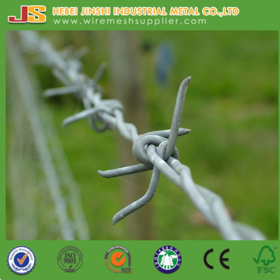 China 14 Gauge Galvanized Twisted Barbed Wire - China Barbed Wire ...