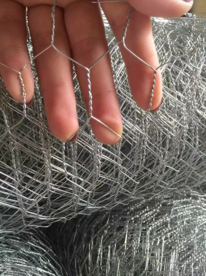 "China Supplier 1/2"" 3/4"" Hexagonal Wire Mesh Chicken Wire Mesh High Quality pictures & photos"