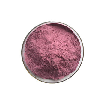 Best Selling Product 100% Natural Grape Seed Extract Powder 95% OPC