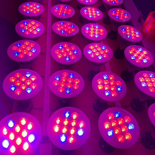 OEM 12W 24W PAR38 E27 LED Grow Light