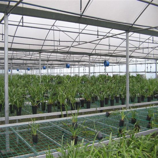 High-Grade Commercial Agriculture Greenhouse for Vegetable pictures & photos