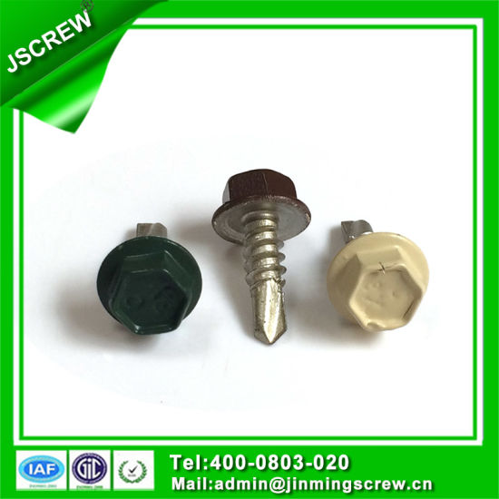10# Painted Hot DIP Galvanized Hex Head Self Drilling Screws pictures & photos