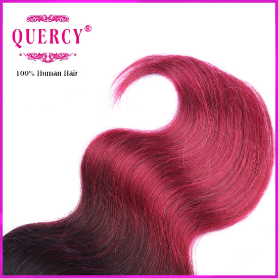 Wholesale Brazilian Hair, Omber Brazilian Human Hair pictures & photos