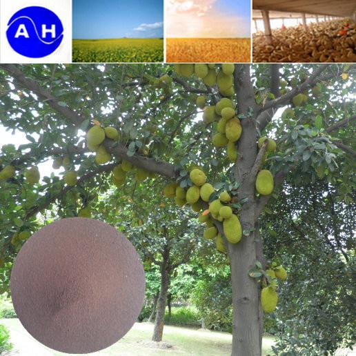 Iron-Amino Acid Chelation Plant Fertilizer