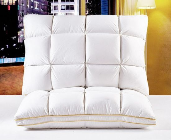 Remarkable China White Goose Down Pillow Full Cotton Sateen Down Pillow Theyellowbook Wood Chair Design Ideas Theyellowbookinfo