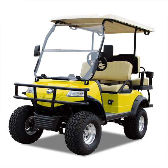 Electric Buggy Golf Cart Hunting Car (DEL2022D2Z, Yellow)