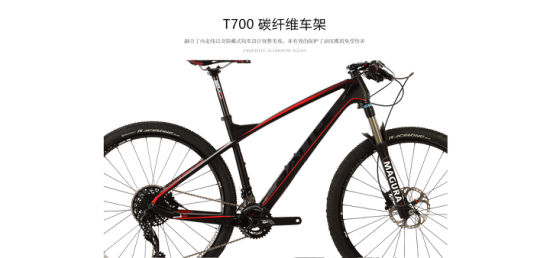 OEM MTB Ultra Light Carbon Mountain Bike / Mountain Bicycle (JF 870) pictures & photos