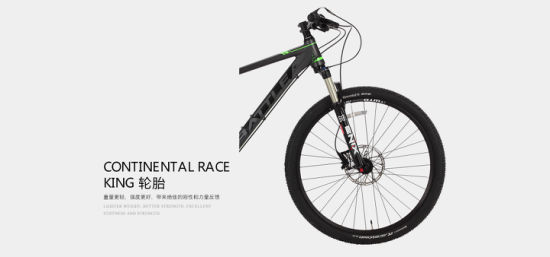 Exquisite Aluminum Alloy and RC32 Series with Sram Nx Drive-Train and Continental Wheels Bike / Mountain Bicycle (ZY 970) pictures & photos