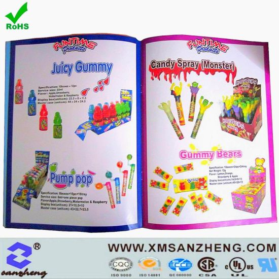 Paper Promotion Catalogue Printing pictures & photos