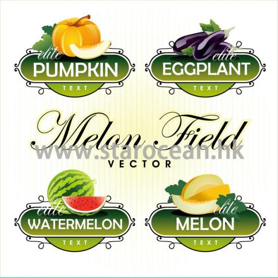 Customized Printing Waterproof Vegetable Pet Stickers